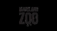 MD-zoo